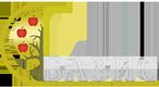 ТД Базис