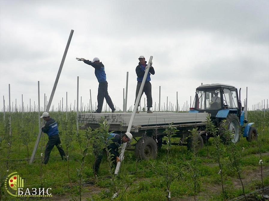 Производство железобетонных шпалер для садов и виноградников